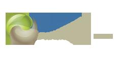 xvi, panamerican, conference, soil, mechanics, geotechnical, engineering, logo